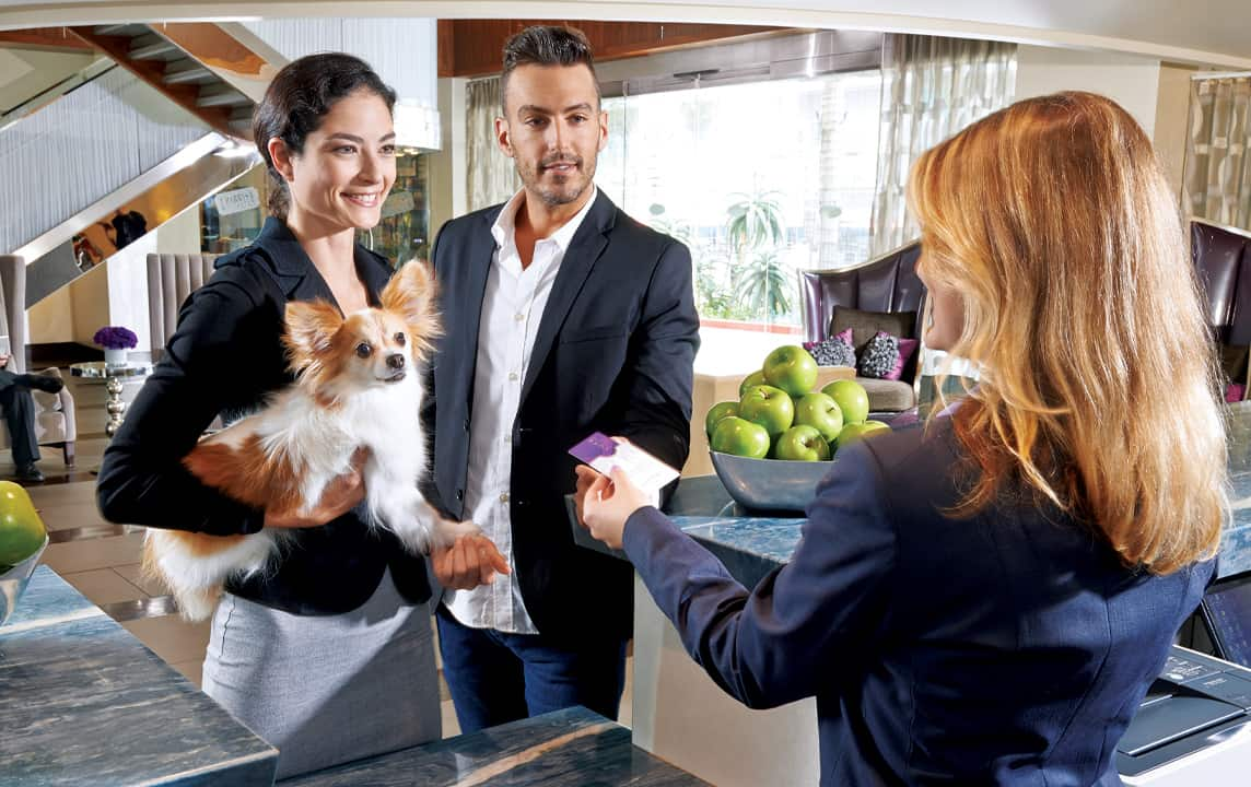 Luxe city Center pet friendly hotel